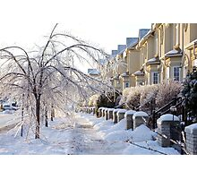 Frozen Suburbia in Colors Photographic Print
