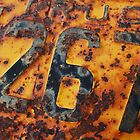 Old License Plate by Paul Sturdivant