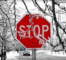 Stop Glacee by Valentino Visentini