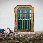 Bicycle by Roger McNally