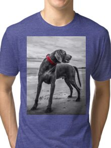 Wandering Beach Dog Tri-blend T-Shirt