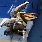Brown Pelican with a Huge Fish by Paulette1021