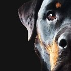 Rottie Love - Rottweiler Art By Sharon Cummings by Sharon Cummings