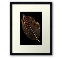 Leaf Lace Framed Print