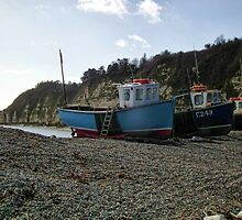 Boats At Beer, Devon UK by lynn carter