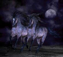 Midnight Run by Lisa  Weber