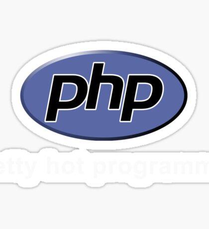 Php - Pretty Hot Programmer Sticker