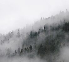 Foggy Winter Mountains on the West Coast by kitkat55555