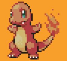 4 - Charmander by ColonelNicky