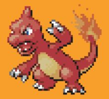 5 - Charmeleon by ColonelNicky