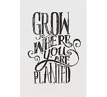 Grow Where You Are Planted Photographic Print