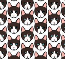 kitty eyes Sticker