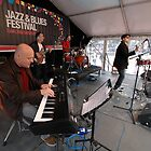 Acca Daiquiris @ Jazz & Blues, Australia 2011 by muz2142