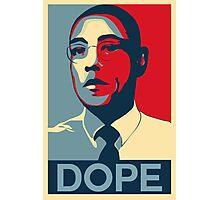 Obama Fring Photographic Print