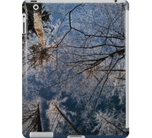 Trees grow to the sky - ice crystals iPad Case/Skin