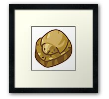Dome Fossil Framed Print
