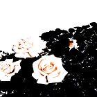 Retro Rose Peach by notanangel81