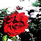 Retro Rose Red by notanangel81