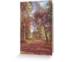 Mystery Path Greeting Card