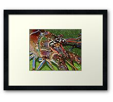 Lobster Head Framed Print