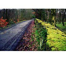 Yellow brick wall Photographic Print