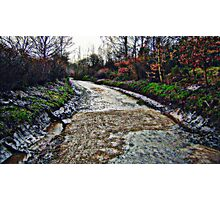 Picture Painting... Photographic Print