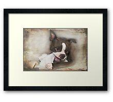 Knick-Knack, Paddywhack, Give the Dog a Bone Framed Print
