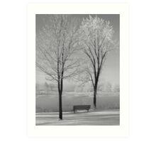 Winterland/bench between twin trees...CANADIAN CULTURE CAPTURED! Art Print