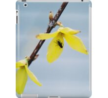 Elita iPad Case/Skin