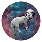 The Space Sheep 2.0 by Karolis Butenas