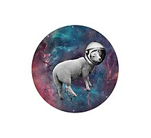The Space Sheep 2.0 Photographic Print