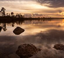 Stepping Stones by PeaceInArt