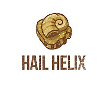 Hail Helix Fossil Photographic Print