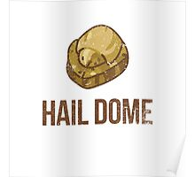 Hail Dome Fossil Poster