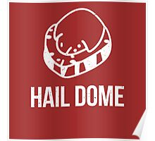 Hail Dome Fossil White Poster