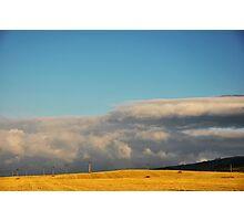Golden Field II Photographic Print