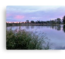Along the Murray River Canvas Print