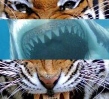 Tiger Shark Sticker