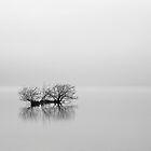 Loch Lomond Mist by Grant Glendinning