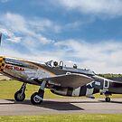 "TF-51D Mustang N251RJ 44-84847 CY-D ""Miss Velma"" by Colin Smedley"