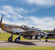 "TF-51D Mustang N251RJ 44-84847 CY-D ""Miss Velma"" by Colin Smedley"