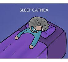 Sleep Catnea by robot-hugs