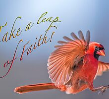 Take a Leap of Faith! by Bonnie T.  Barry