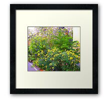 A Riot Of Colour..................French Style Framed Print