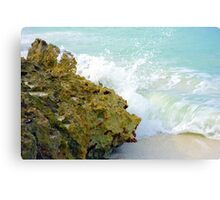 Wave and Rock Canvas Print