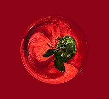 Petunia Sphere by Robert Gipson