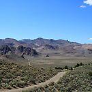 Desert Valley, Reno Nevada USA by Anthony & Nancy  Leake