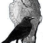 Raven & Runestone by Zehda