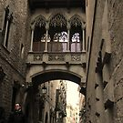 Gothic Quarter - Barcelona by rsangsterkelly