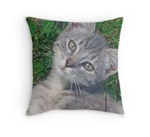 Gray Kitty - Fee-Fee Throw Pillow